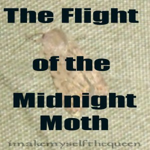 2010-10-06-moth-attack-imgp4246txtc2